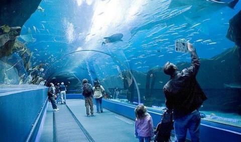 Самый большой аквариумпарк в мире