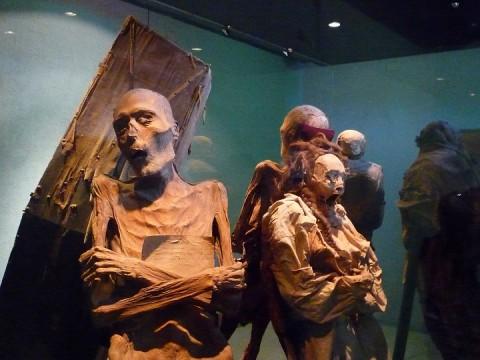 Museum mummies Guanajuato Mexico