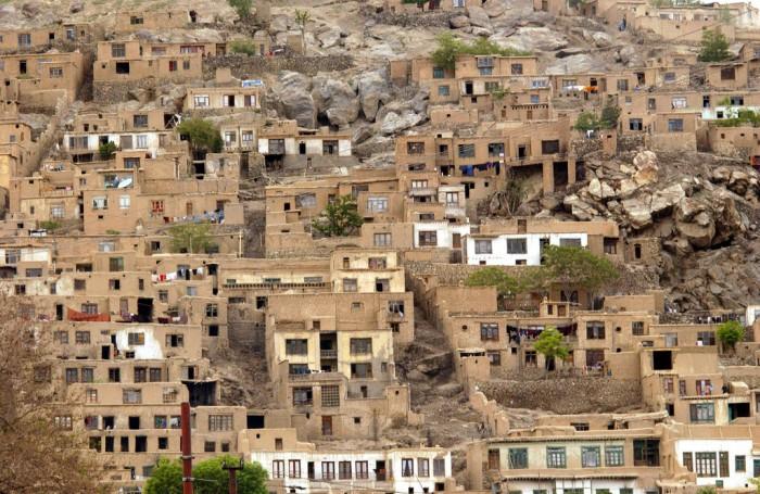 afgan_LaryT