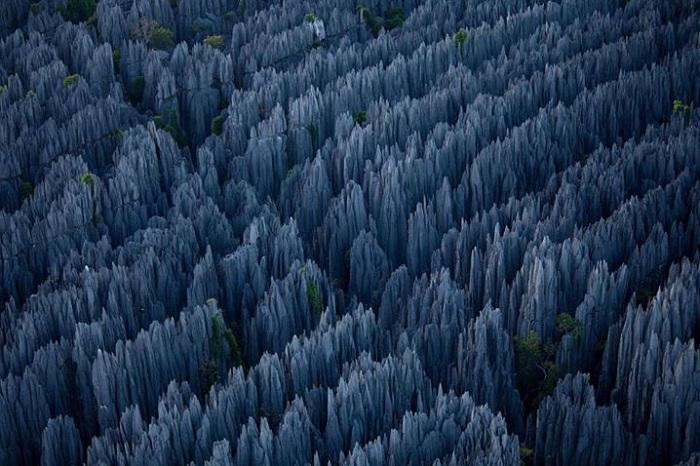http://travel.biletyplus.ru/wp-content/uploads/2014/07/stone-forest_RasheedFR.jpg
