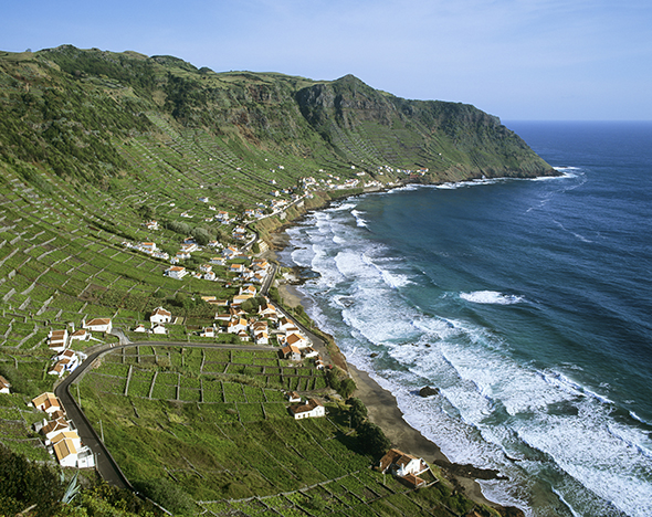 Sao Lourenco Bay with terraced vineyards by the sea. Santa Maria, Azores islands, Portugal